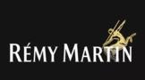 世界上最昂贵的干邑之一人头马路易十三