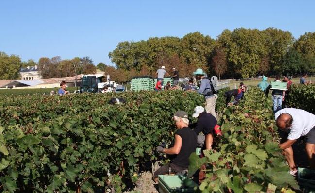 法国6大葡萄酒产区,或许你只熟悉波尔多