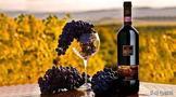 意大利国酒—葡萄酒
