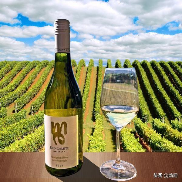 新西兰国酒—长相思葡萄酒Sauvignon