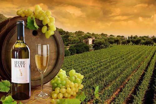 澳大利亚红酒产区主要有哪些?澳大利亚十大红酒产区