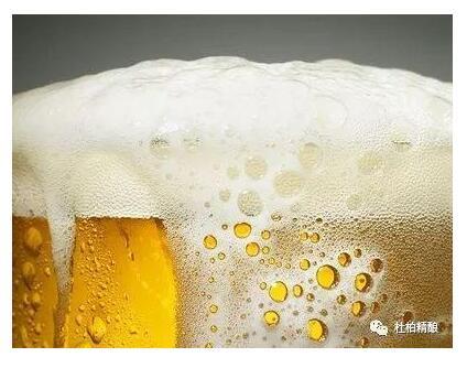 不懂啤酒泡沫,你的精酿可就白喝了