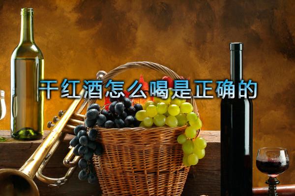 干红酒怎么喝是正确的