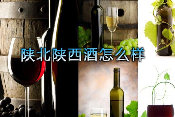 陕北陕西酒怎么样