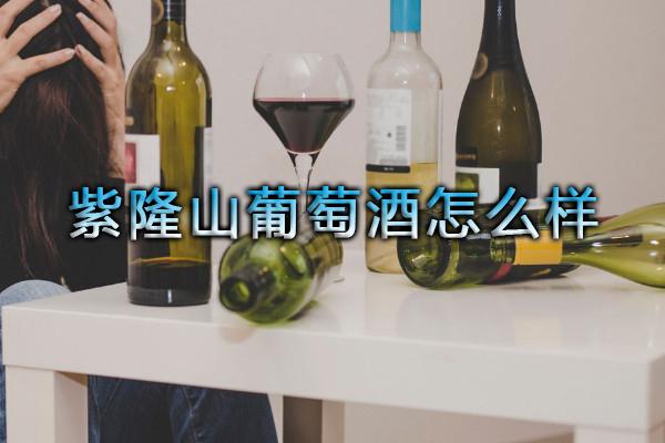 紫隆山葡萄酒怎么样