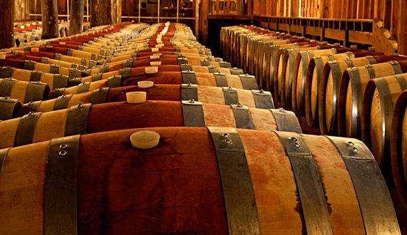智利红酒所有品牌