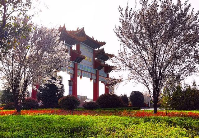 第38届中国洛阳牡丹文化节开幕式:杜康冠名