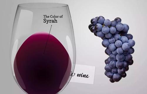 西拉葡萄酒的价格