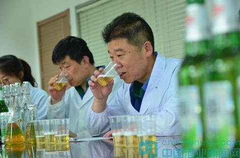 """青岛啤酒邀您来当""""魅力质量体验官"""",好品质""""酒""""听你的"""