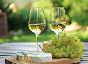 干白葡萄酒配什么好喝