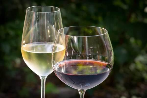白葡萄酒和红葡萄酒的功效与作用