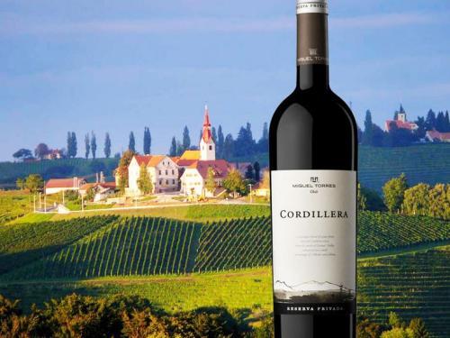 法国十大红酒酒庄排名