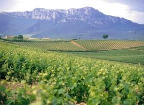 西班牙葡萄酒最好产区