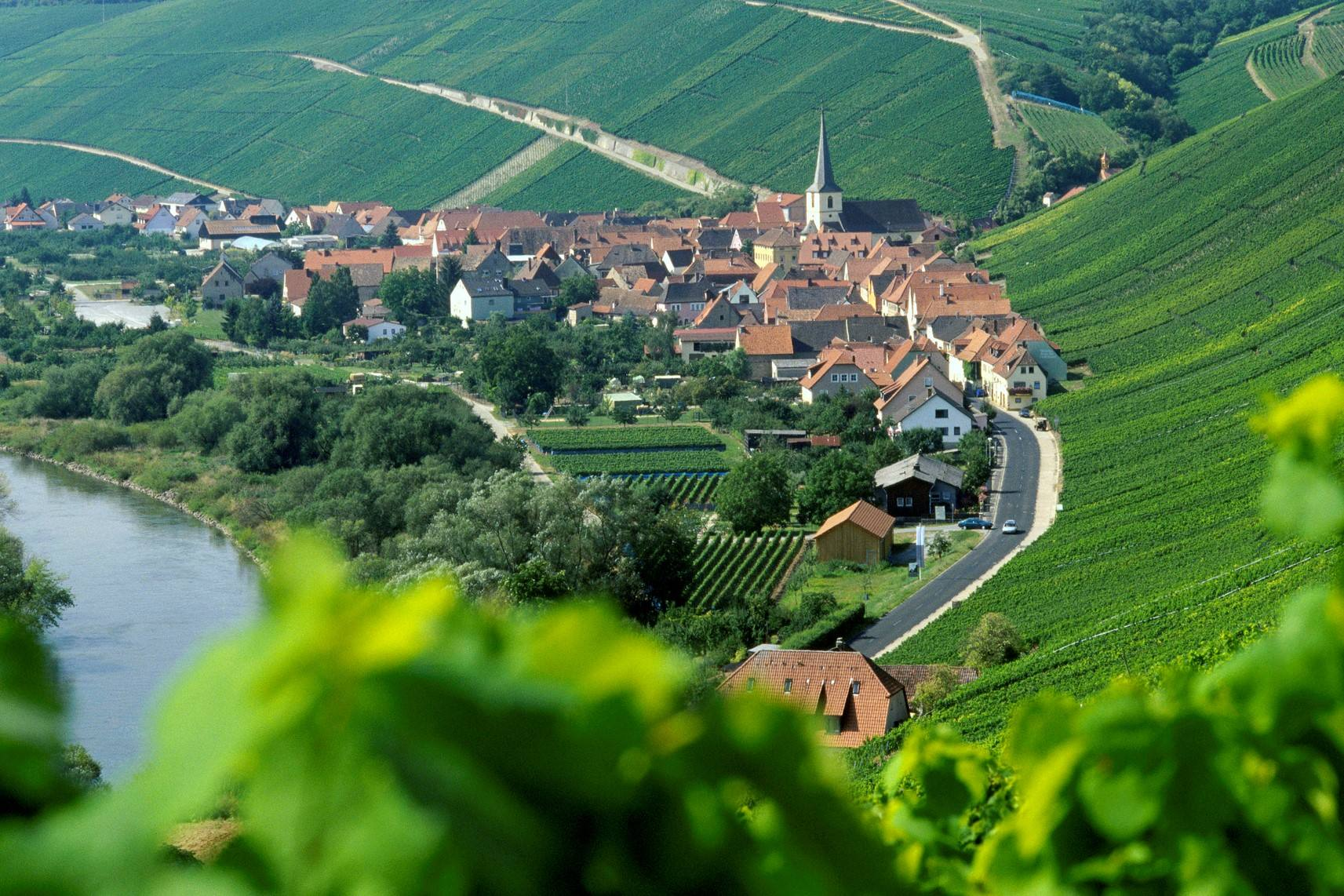 德国葡萄酒四大产区