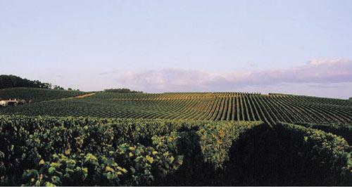 法国干邑的六大产区