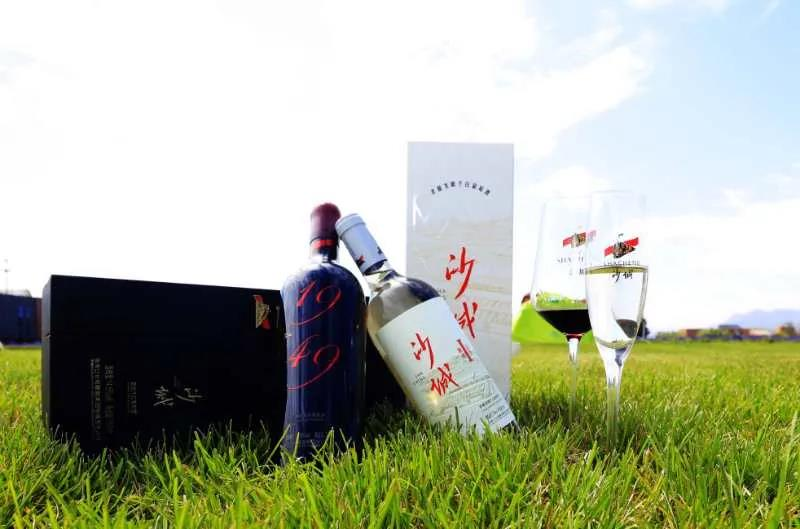 """沙城葡萄酒""""征服""""怀来首届国际葡萄酒博览会"""