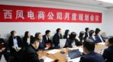 西凤电商公司工作规划会议召开