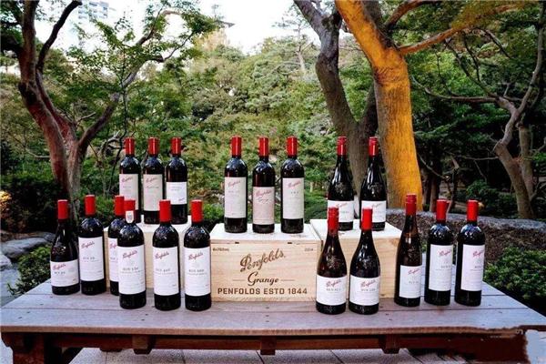 葡萄酒的保存期限一般是多长时间