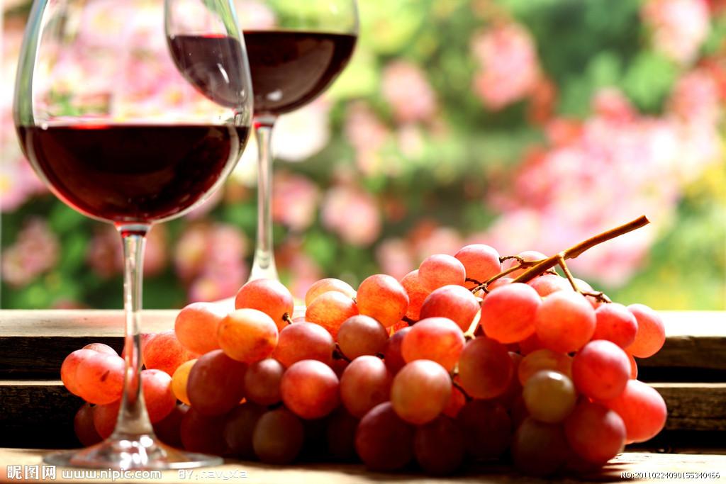 葡萄酒红酒的饮用方法