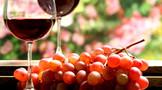 怎么去识别葡萄酒好与坏呢