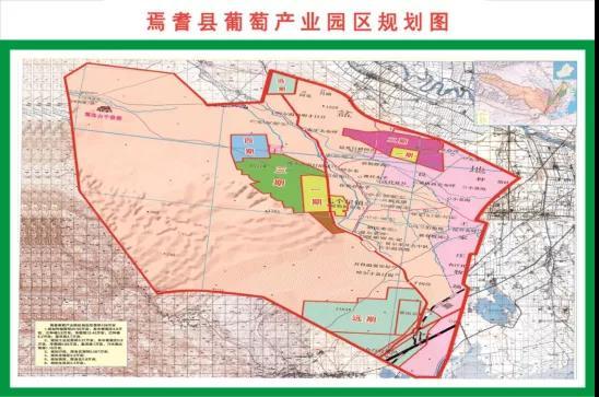 聚焦五大发展路径,新疆巴州打造优质葡萄酒产业集群