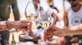 美国5年内暂停征收对法国葡萄酒25%惩罚性关税