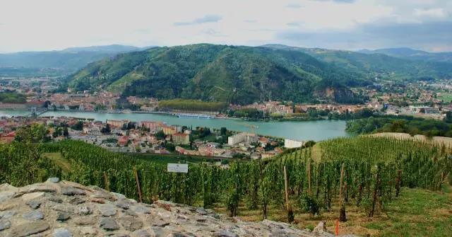 罗讷河谷葡萄酒产区