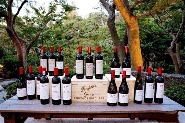 简述适度饮用葡萄酒带来的健康益处有哪些?