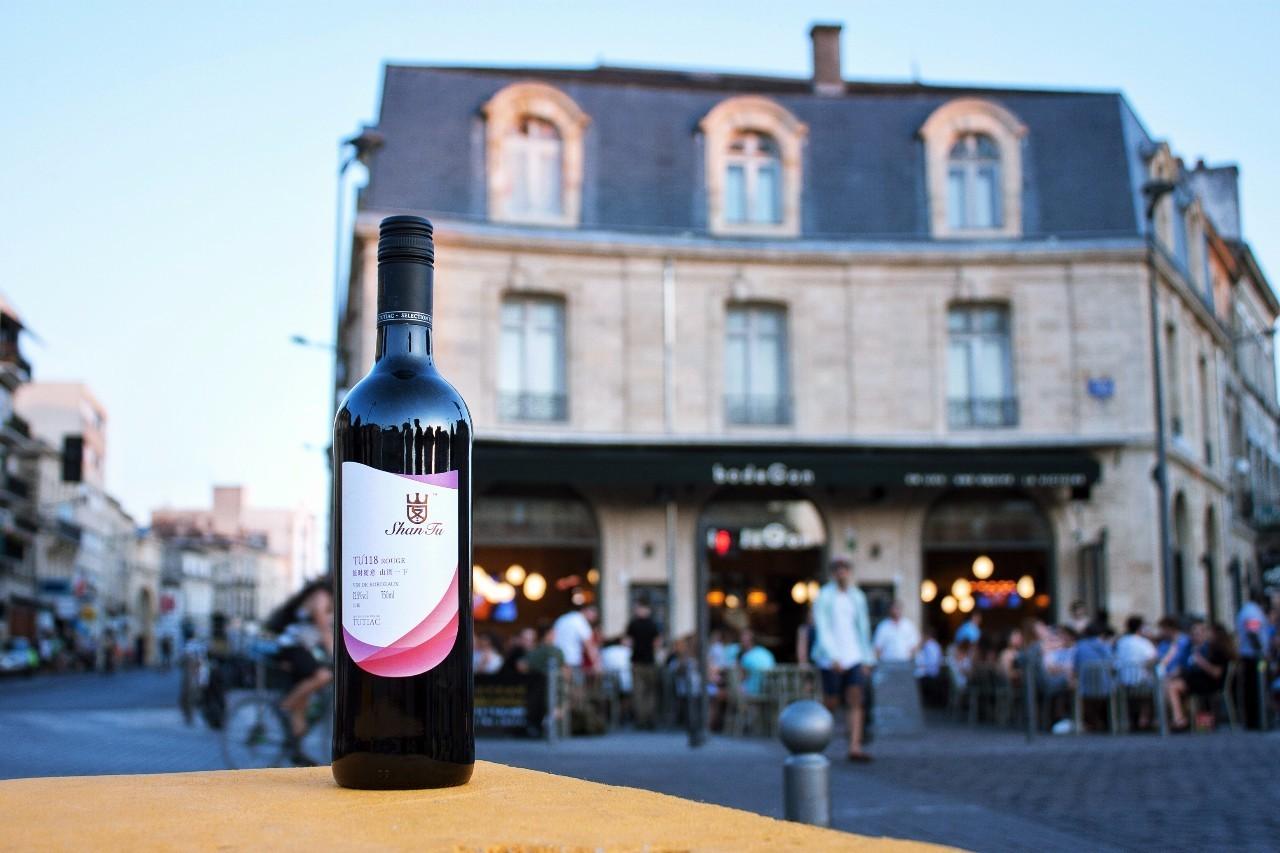 红葡萄酒怎么喝,品酒的指南